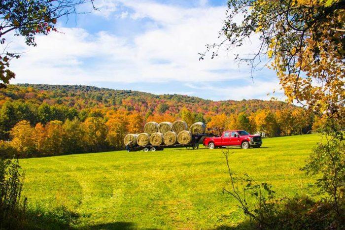 10.  Sugarbush Farm Maple & Cheese Farm, Woodstock