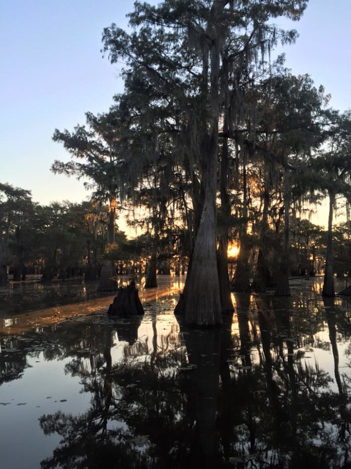 Cypress Cove Landing can be found at 1399 Henderson Levee Rd. in Breaux Bridge, LA.