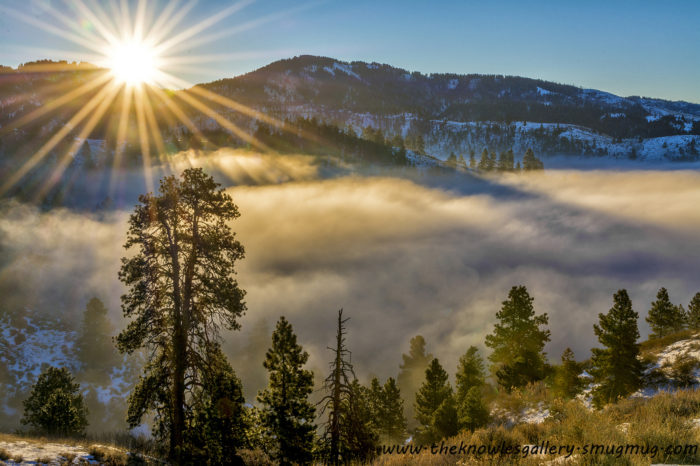 1. Head up to Bogus Basin.