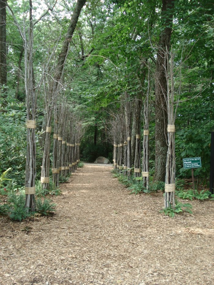 The entrance to the Garden in the Woods is fittingly magical. You really feel like you're entering another realm.