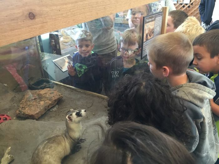 Want to learn even more about these native creatures? You're in luck, as  special camps, exhibits, and classes are constantly being held on the premises.