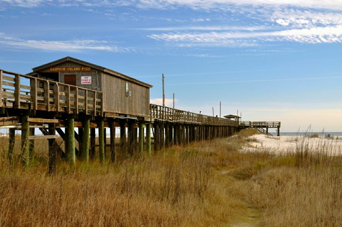 """Dauphin Island is located at the southernmost point of Alabama. From its beautiful sandy beaches to its historic past, Dauphin Island is a place like no other. If you're wanting relaxation mixed with a little adventure, a trip to this """"little slice of paradise"""" is a must."""