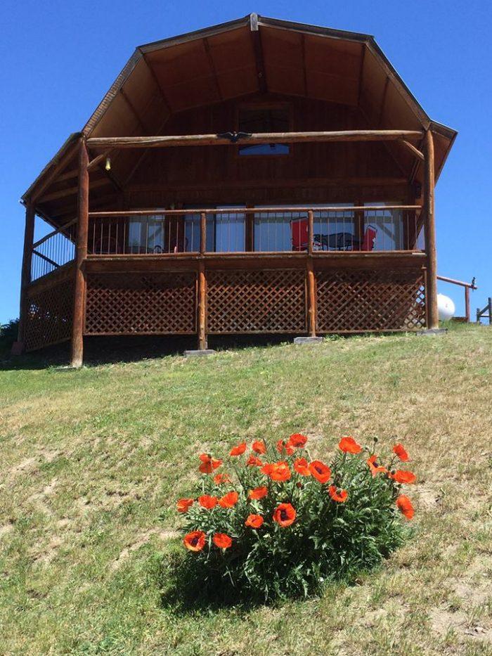 1. Wilderness Spirit Cabins, Corvallis