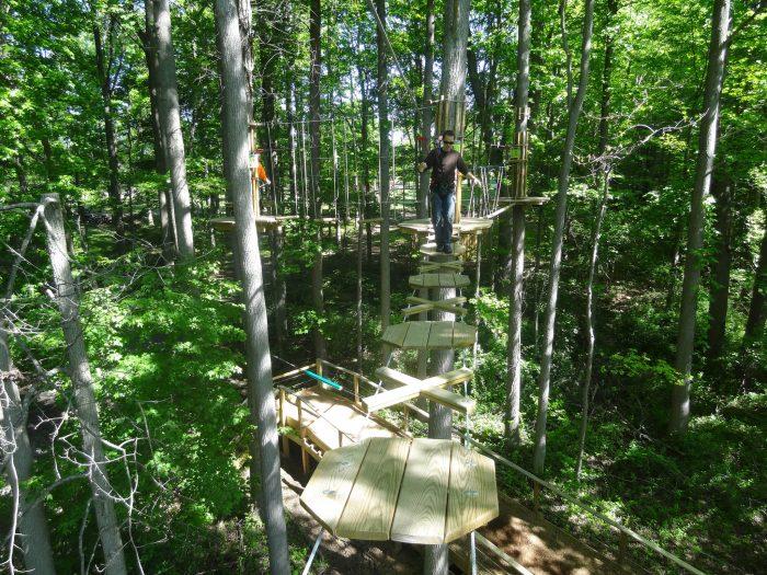 3. Go Ape at Lum's Pond State Park