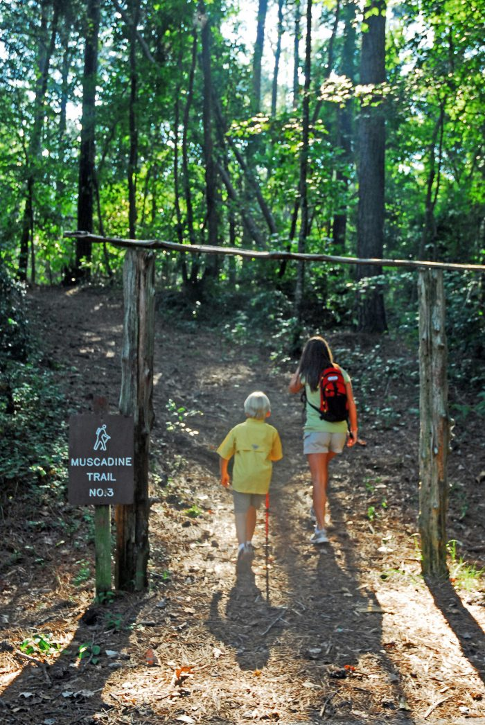 Roosevelt State Park has four nature paths that wind through the wooded area surrounding the lake.