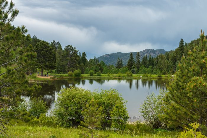 Fish the park's five well-stocked ponds, where you can reel in brown trout, rainbows, and other gilled creatures, (as long as you have a Colorado fishing license and daily or annual vehicle pass).