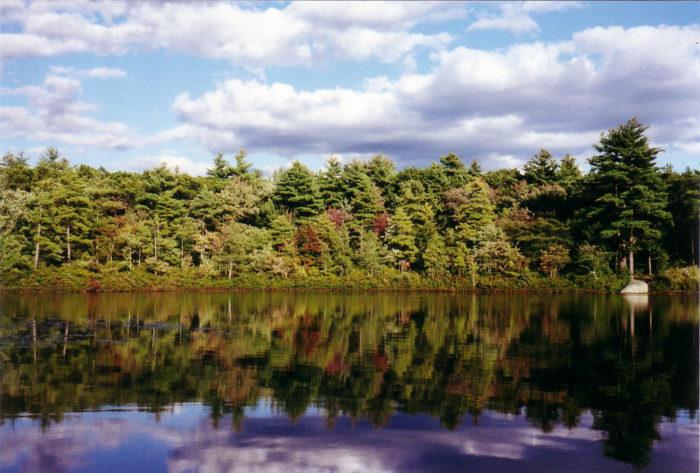 4. Berry Pond, North Reading