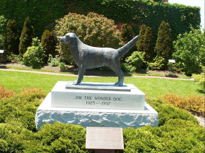 15. Grave of Jim the Wonder Dog – Marshall, Mo.