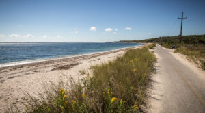 Everyone Should Try This Waterfront Trail In Massachusetts Before Summer's Over