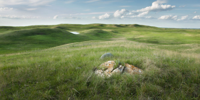 2. Davis Ranch, one of the largest remaining natural, barely touched prairie landscapes