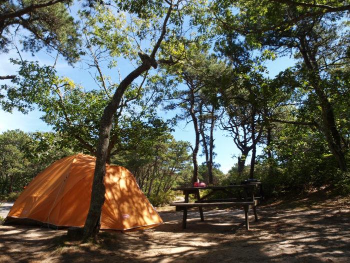 2. Dune's Edge Campground, Provinctown