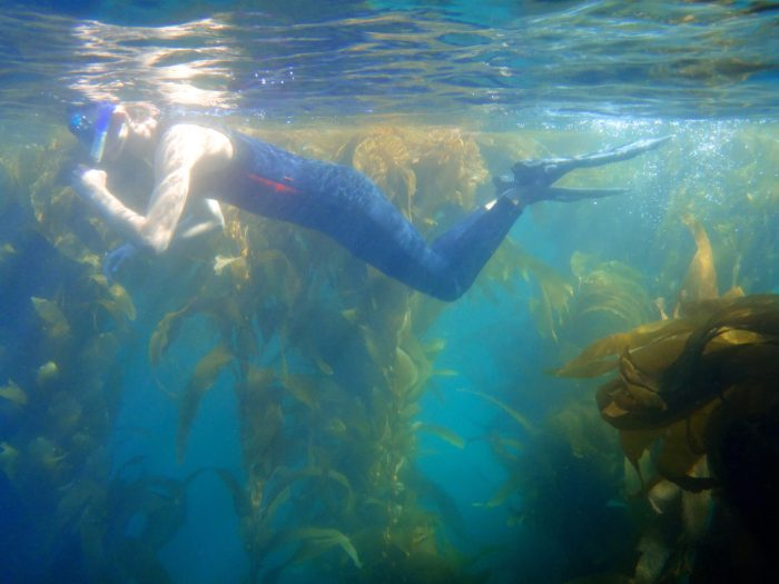 9. Snorkeling at Channel Islands