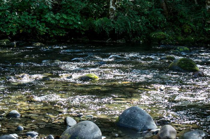 9. Wildwood Recreation Area