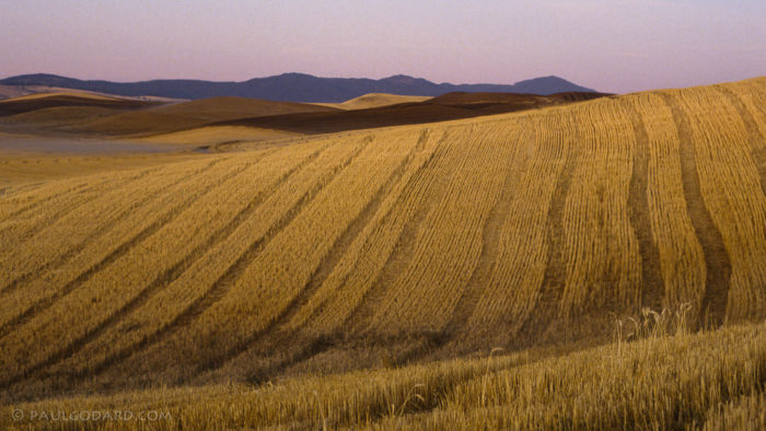 11. Breathe in and out along with the movement of the Palouse hills.