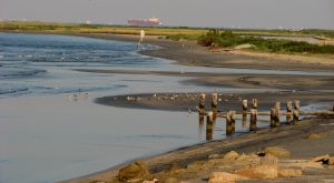 8 Of The Best Beaches Near Galveston To Visit This Summer