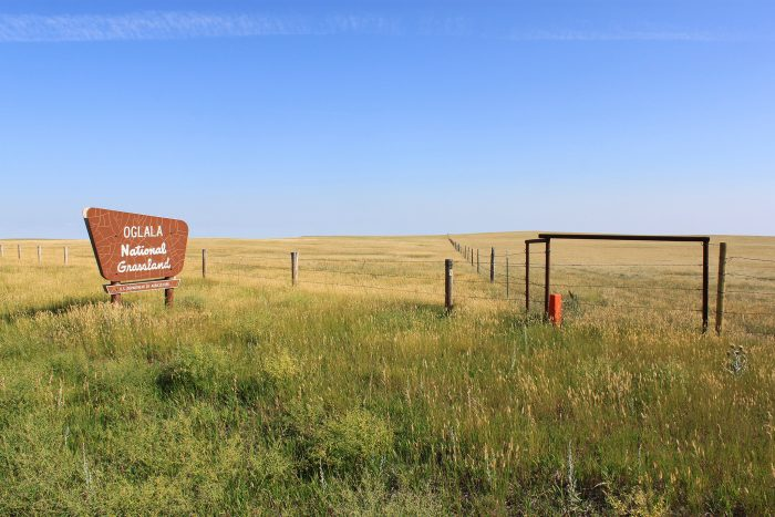 3. We've got widely varied ecosystems, from wild grasslands...