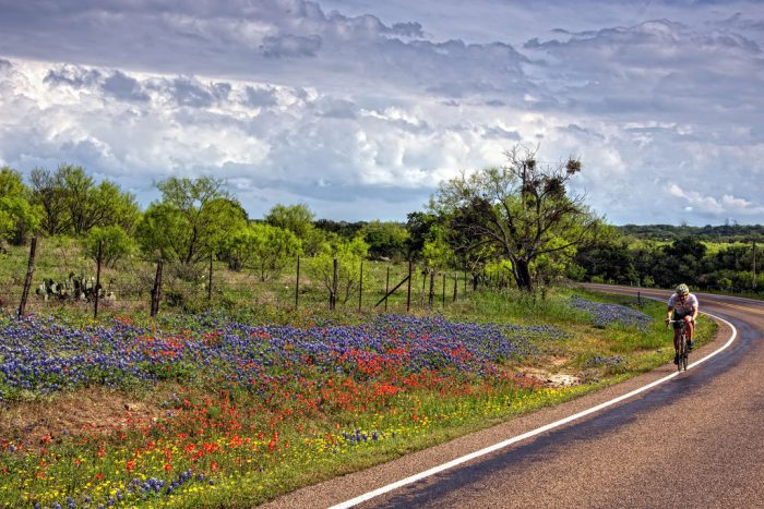 ...so the addition of the beautiful, vibrant wildflowers will take your breath away.