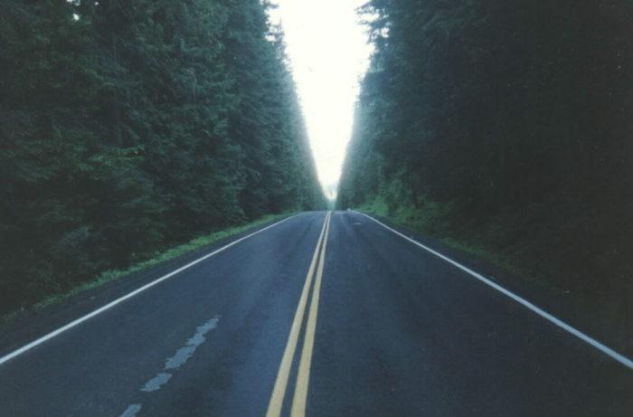 7. Take a ride on White Pine Drive.