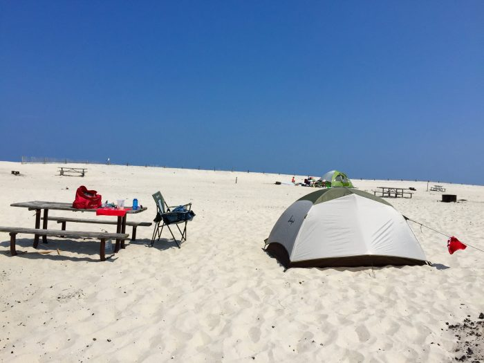 Located in Berlin, Assateague State Park has 350 campsites to choose from and they're all pretty amazing.