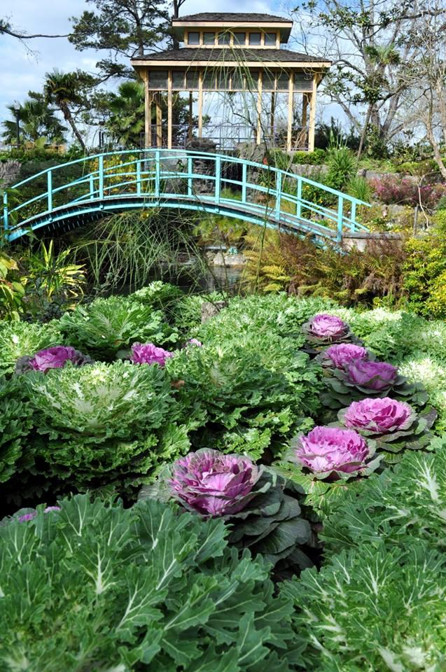 6. Houmas House Gardens