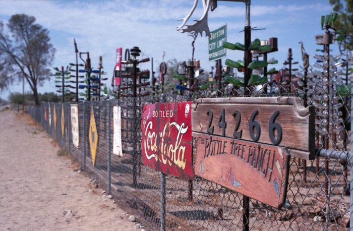 3. Elmer's Bottle Tree Ranch