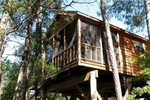 7. Luxury Tree House, Milton