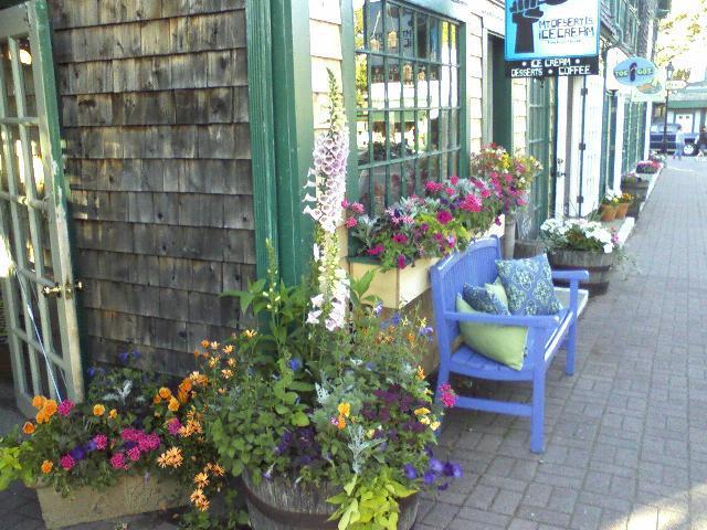 2. Mount Desert Island Ice Cream, Bar Harbor (and Portland)