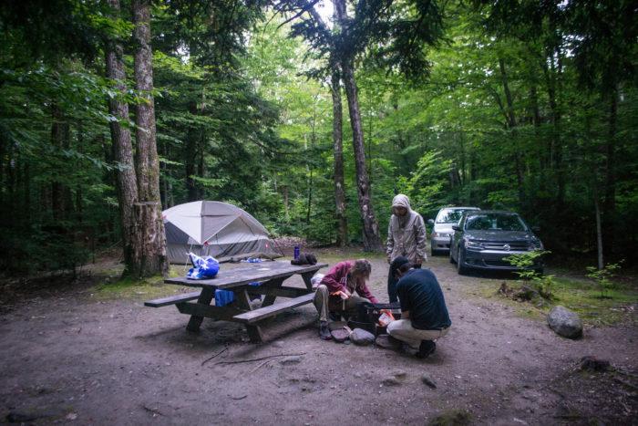 3. D.A.R. State Forest, Goshen
