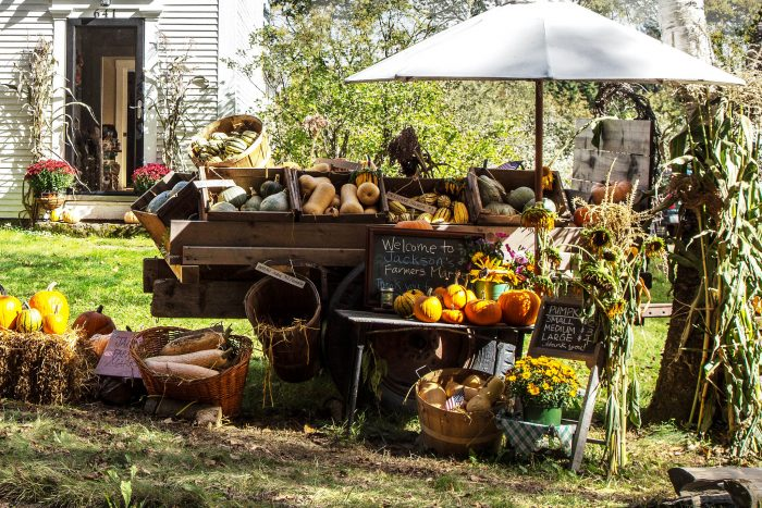 11.  We have the best farmers markets.