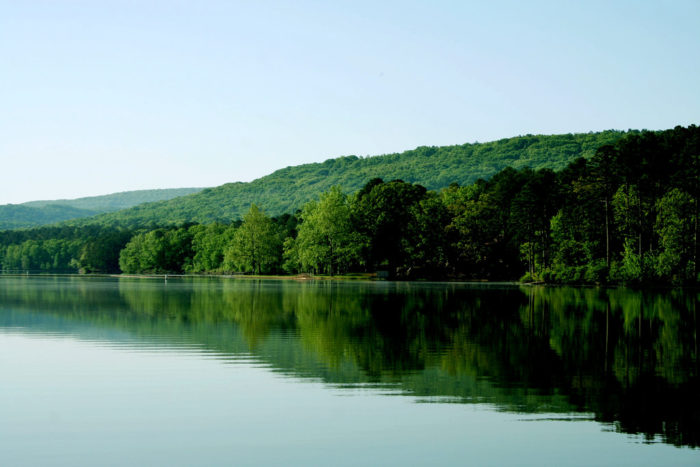 Cove Lake is practically perfect all the way around.