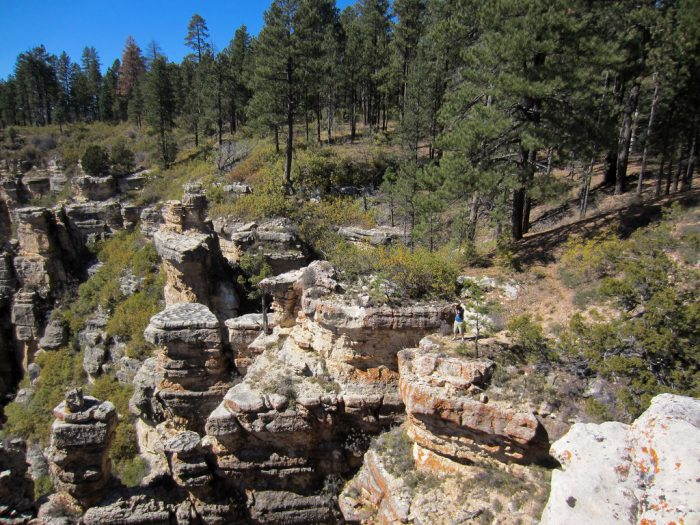6. North Rim of the Grand Canyon