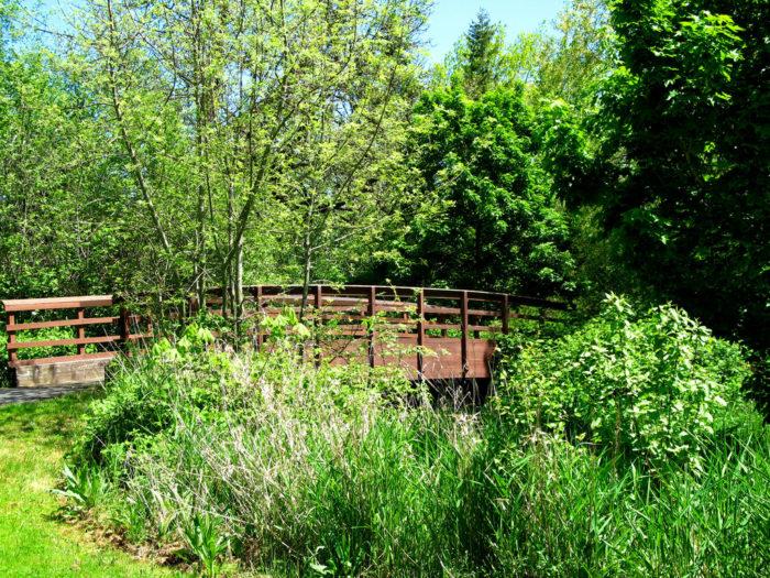 8. Fanno Creek Greenway Trail