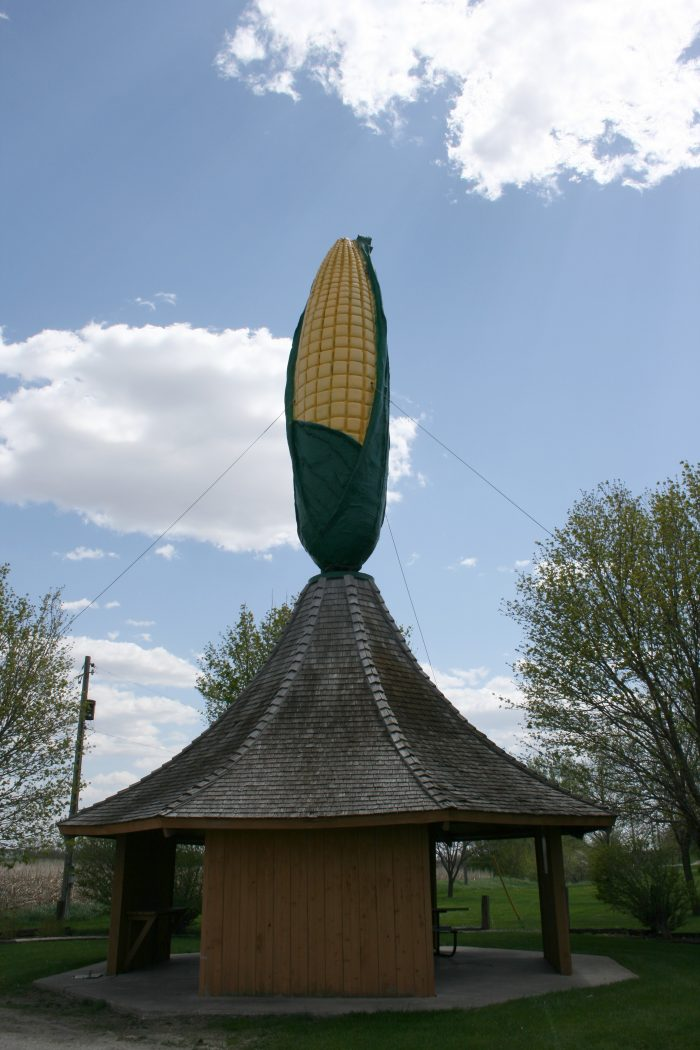 9. In Olivia, this corn of epic proportions will certainly catch your eye from the road, and offers the perfect drive-by  photo op.