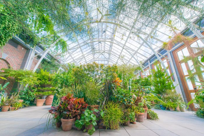 With sixteen distinct gardens over 130 acres of natural preserve, this place is bursting with beauty.