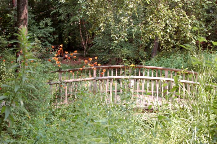 The garden includes a lily pond, babbling brook, a wooded bog, several cool springs and plenty of secluded nooks.