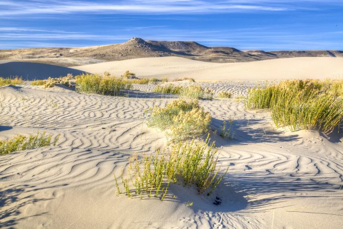 7. Visit the second largest traveling sand dunes in the world... Killpecker Dunes.