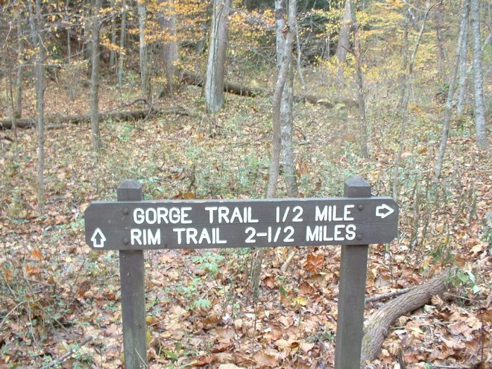 The Rim Trail is 2.5 miles long and takes approximately an hour and a half to complete, so plan accordingly.