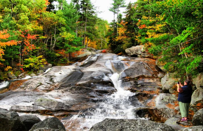 1. Step Falls Trail, Newry