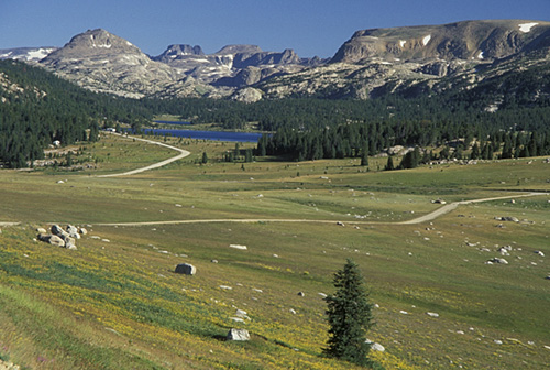 """12. Drive along what Charles Kuralt thought was """"The Most Beautiful Drive In America... Beartooth Highway."""