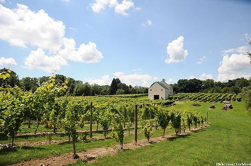 1. Jewell Towne Vineyards, South Hampton