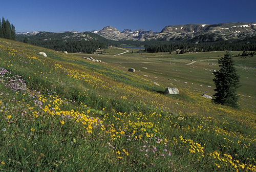 1. Beartooth Scenic Byway