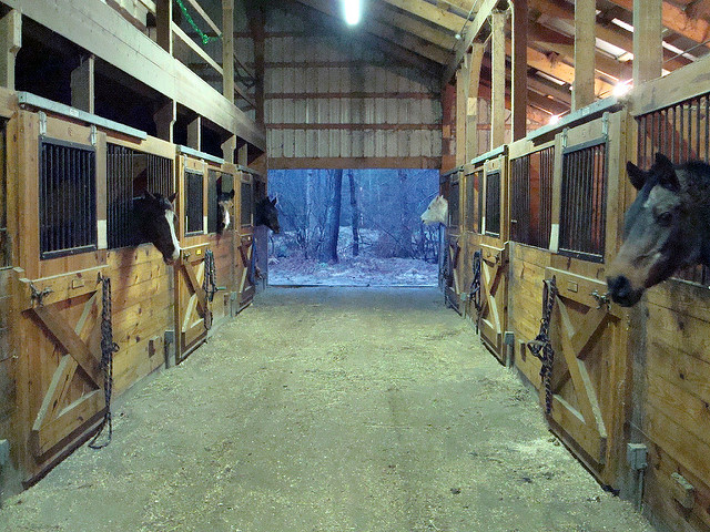 7. This beautiful barn looks like a cozy home for these Rhode Island horses.