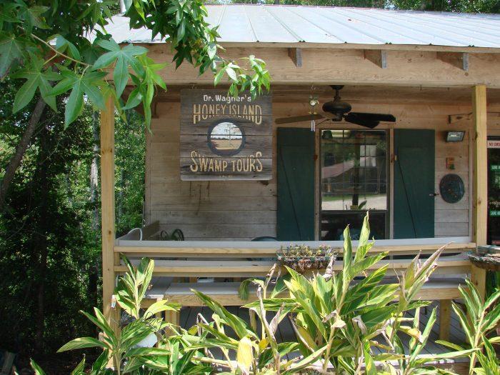 3) Take Dr. Wagner's Honey Island Swamp Tour.