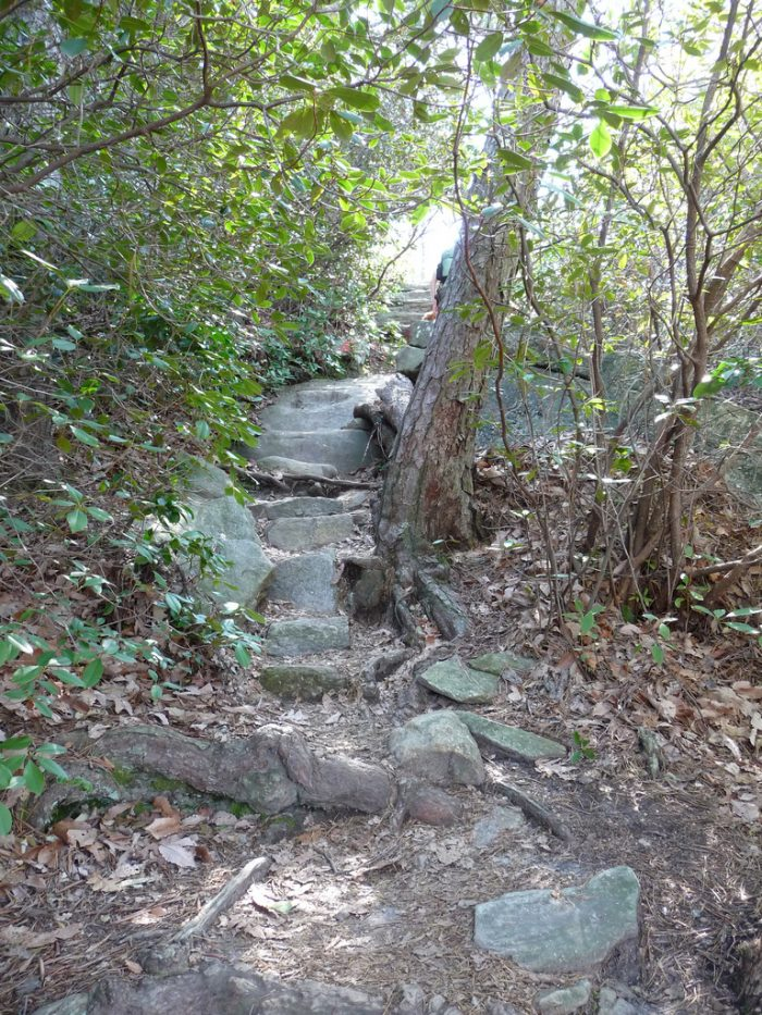 Table Rock Trail is probaby not for the beginner hiker, but with some experience worn into your hiking boots you may decide it's worthy of a go.