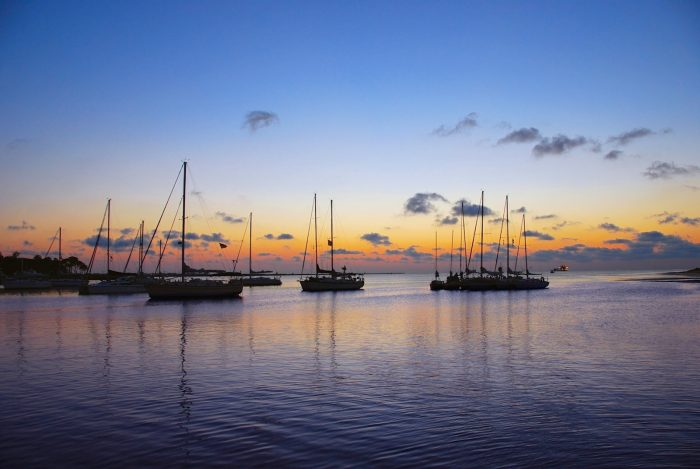 There are so many beautiful sights to behold in Dauphin Island.