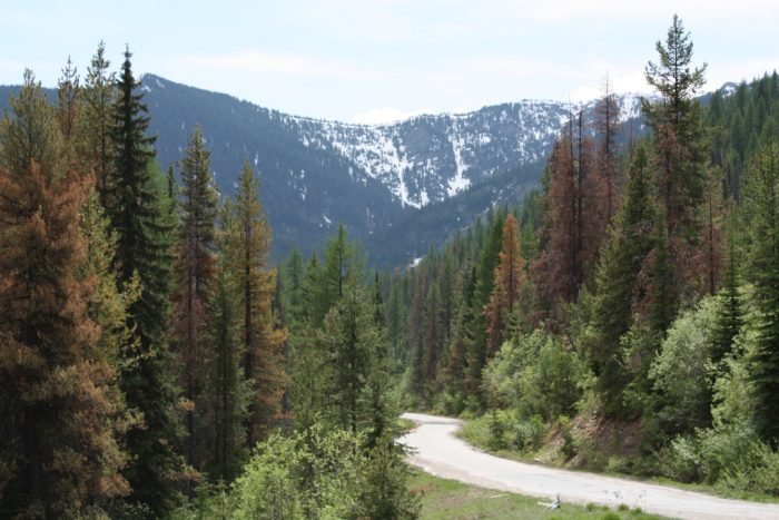 Lookout Pass makes a picturesque end to the Idaho portion of the Mullan Road.