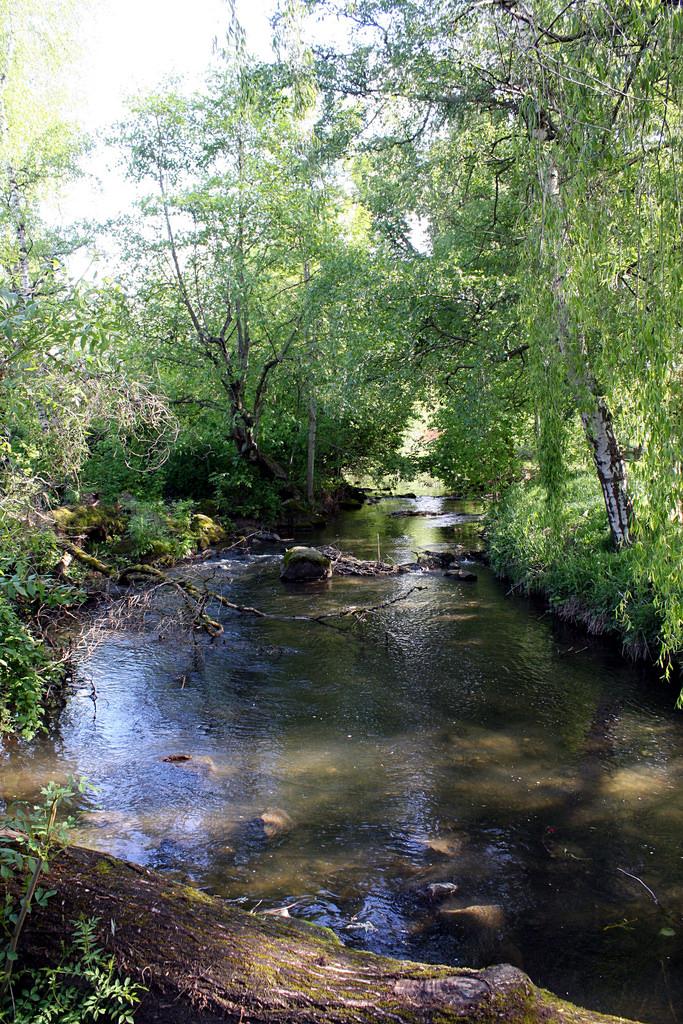 8. Johnson Creek Park