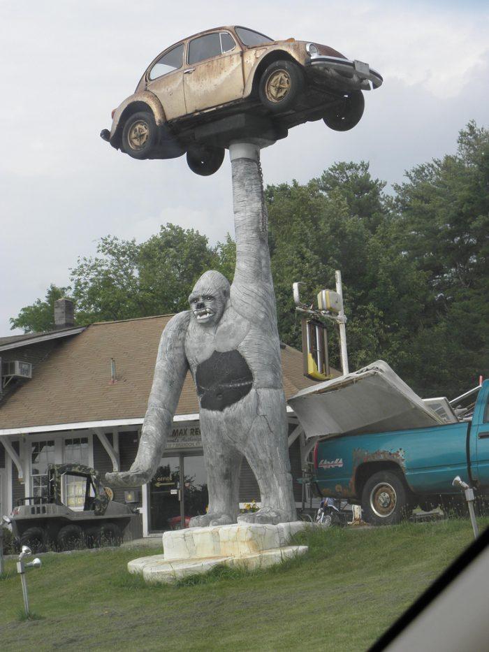 10.  A gorilla holding a VW Bug.