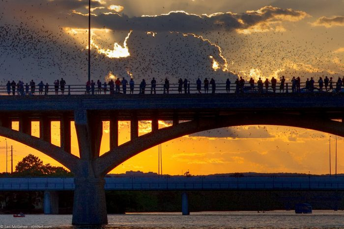 8. Watching in awe as millions of Mexican free-tailed bats emerge from beneath the Congress Avenue bridge and cover the horizon in a sea of black. (Austin)