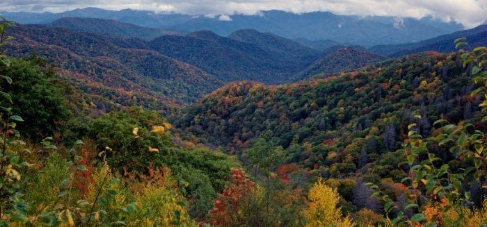 1. Spend a good chunk of time in the Great Smoky Mountains.